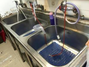 寵物不銹鋼洗澡槽