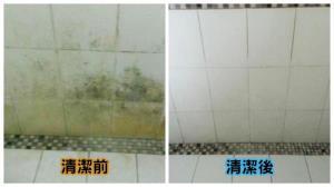 浴室壁磚清潔