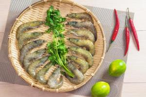 阿拉伯藍鑽蝦<大>