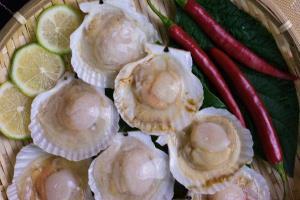 半殼鮮凍扇貝