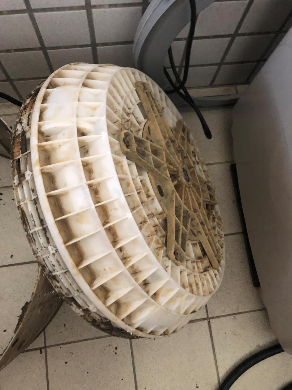 2019.9.9(聲寶)清洗洗衣機