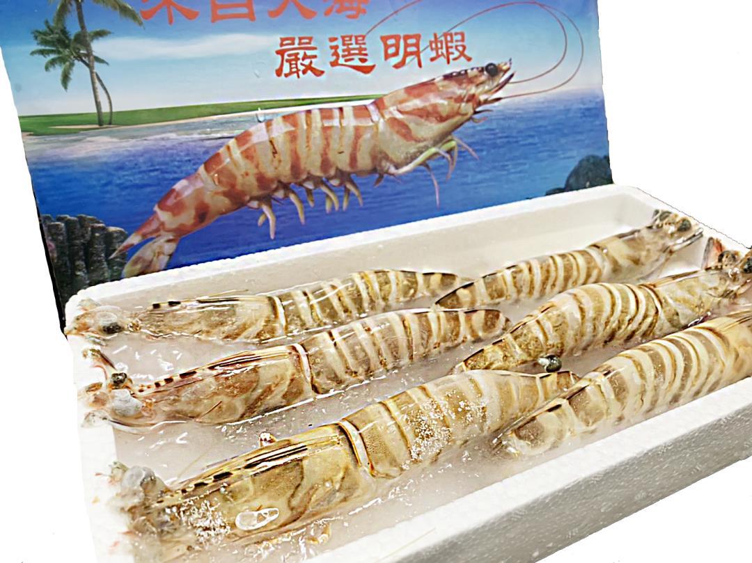 野生大明蝦(6尾)