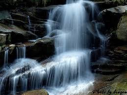 熱愛並支持自然療癒的澄益