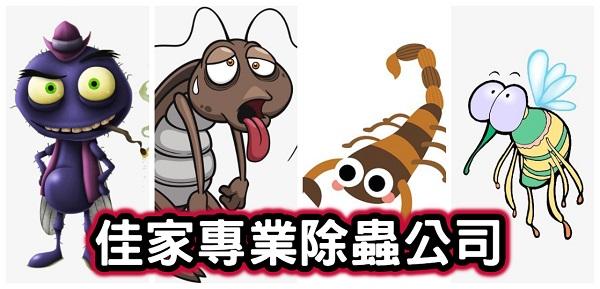 台中佳家除蟲有限公司/居家除蟲推薦/白蟻防治/害蟲防治/消滅蟑螂/老鼠防治/螞蟻預防