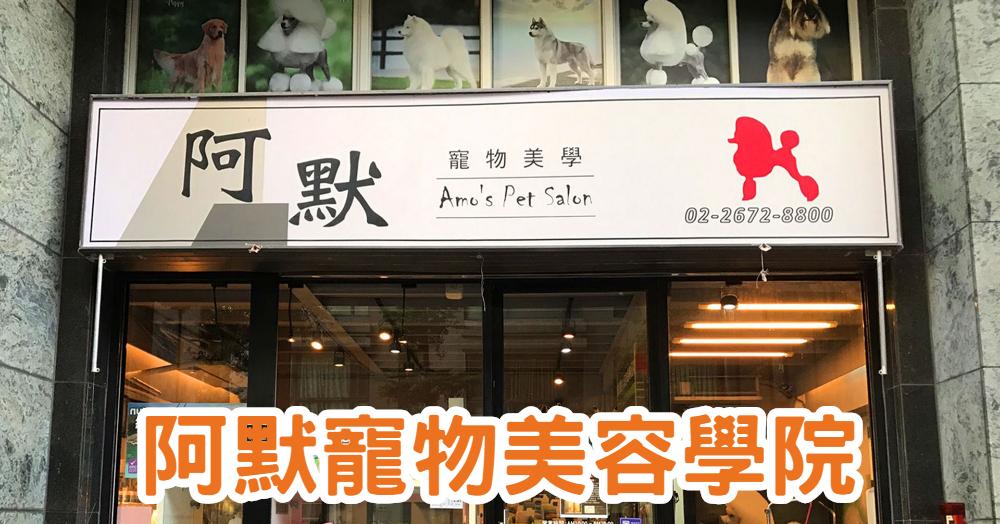 【寵物美容】台北寵物美容課程-寵物美容證照|阿默寵物美容學院