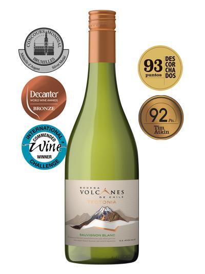 2013 智利白酒 TECTONIA SAUVIGNON BLANC (2017Decanter World Wine Awards   銅牌)