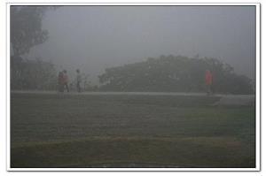 【新七日瑜珈斷食】濃霧散去‧達爾文