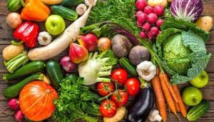 斷食就是只吃蔬菜水果嗎?|蘇老師斷食營