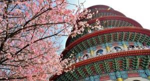 台灣10大季節限定美景!捕捉最美的一刻
