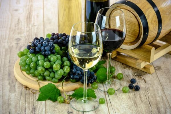 紅葡萄酒與白葡萄酒有什麼差別?