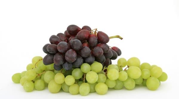 紅葡萄酒的酒紅色,是來自於其紫紅的外皮。
